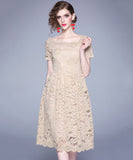 Louise Lace Dress (Non-Returnable)