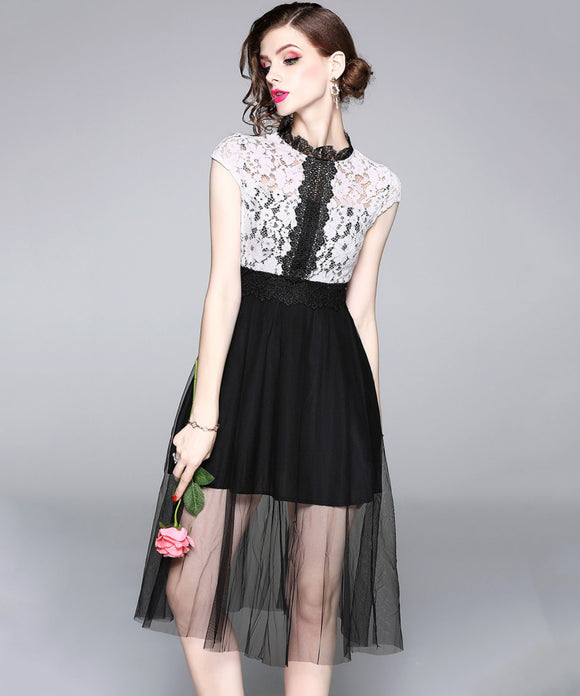 Lena Lace Mesh Overlay Dress (Non-Returnable)