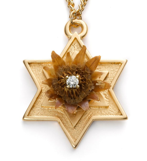 14K Gold Large Star of David