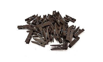 Dark Brown mini pegs 3 5cm wood small wooden peg clip clamp wood