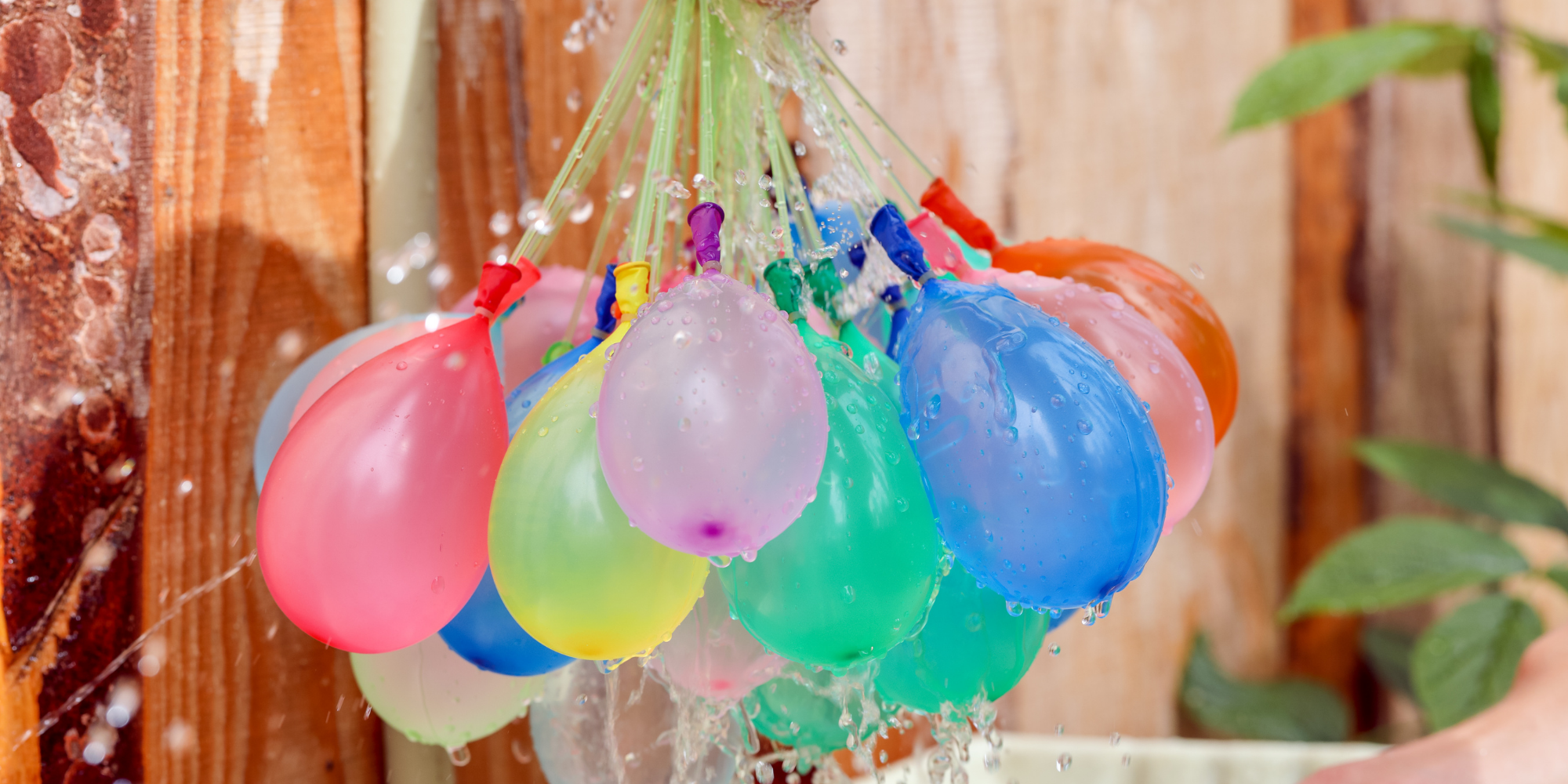 A bunch of water balloons