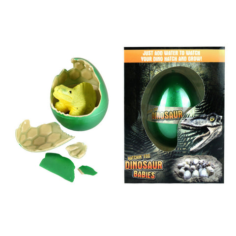 HATCHING DINOSAUR EGG - GROW YOUR OWN DINOSAUR | Cheap Toys | PoundToy