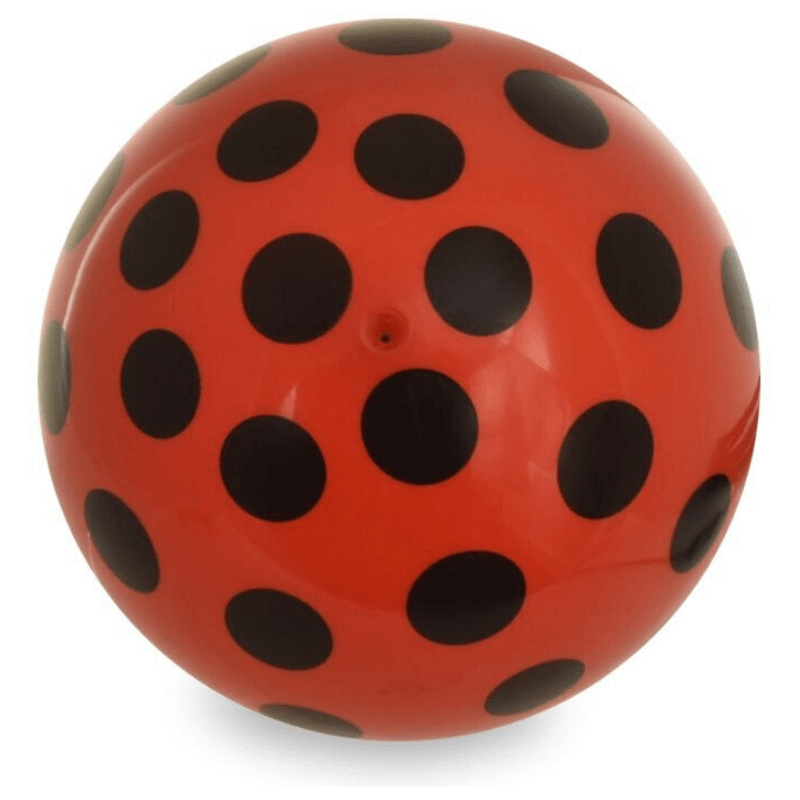 Ladybird Inflatable Football