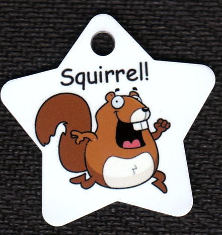 Star Squirrell