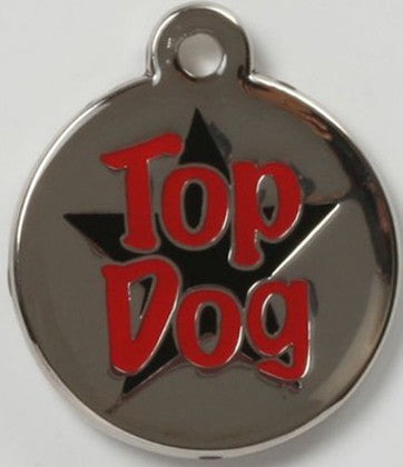 Round Color Filled Top Dog Pet ID Tag