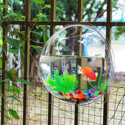 Acrylic Fish Bowl Wall Hanging Aquarium Tank Aquatic Pet Supplies Pet Products Wall Mount Fish Tank-Dollar Bargains Online Shopping Australia