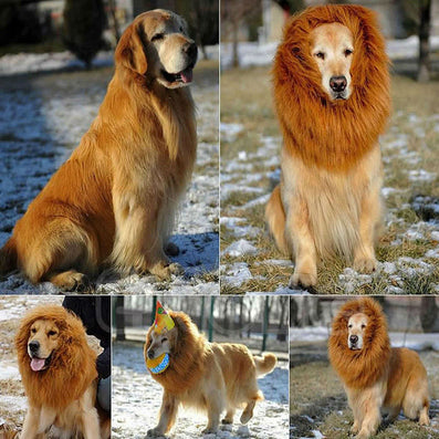 Pet Costume Dog Lion Wigs Mane Hair Festival Party Fancy Dress Halloween Costume pet lion hair,pet hair accessories-Dollar Bargains Online Shopping Australia