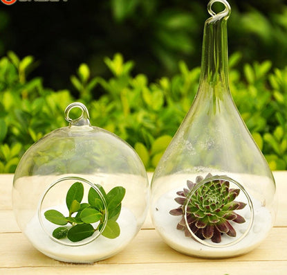 1 Pcs Clear Glass Round with 1 Hole Flower Plant Stand Hanging Vase Hydroponic Home Wedding Decor-Dollar Bargains Online Shopping Australia