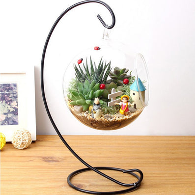 DIY Hydroponic Plant Flower Hanging Glass Vase Container Home Garden Decor new arrival-Dollar Bargains Online Shopping Australia