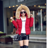 Hot!New warm Autumn Winter jacket women 2016 Fashion Women coat thick hoody winter coat slim women parka warm womens Down jacket - Dollar Bargains - 2