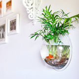 New Home Decoration Pot Plant Wall Mounted Hanging Bubble Fish Bowl Acrylic Bowl Fish Tank Aquarium-Dollar Bargains Online Shopping Australia