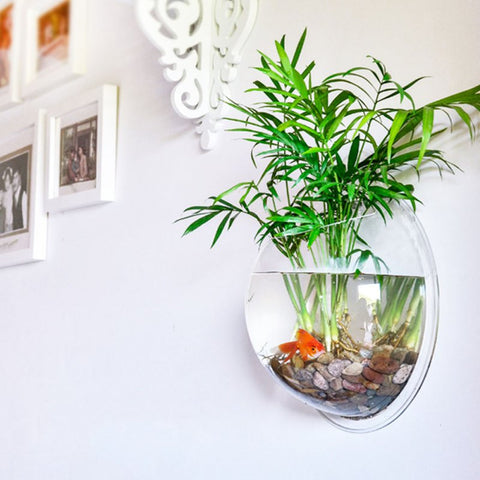 New Home Decoration Pot Plant Wall Mounted Hanging Bubble Fish Bowl Acrylic Bowl Fish Tank Aquarium - Dollar Bargains - 1