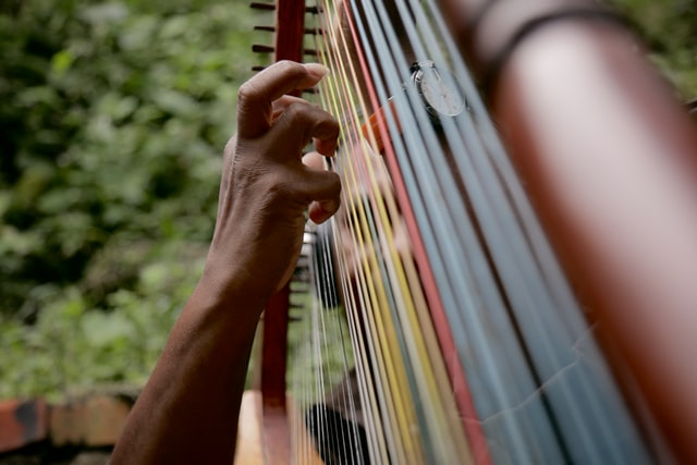 hand playing stringed musical instrument selective focus