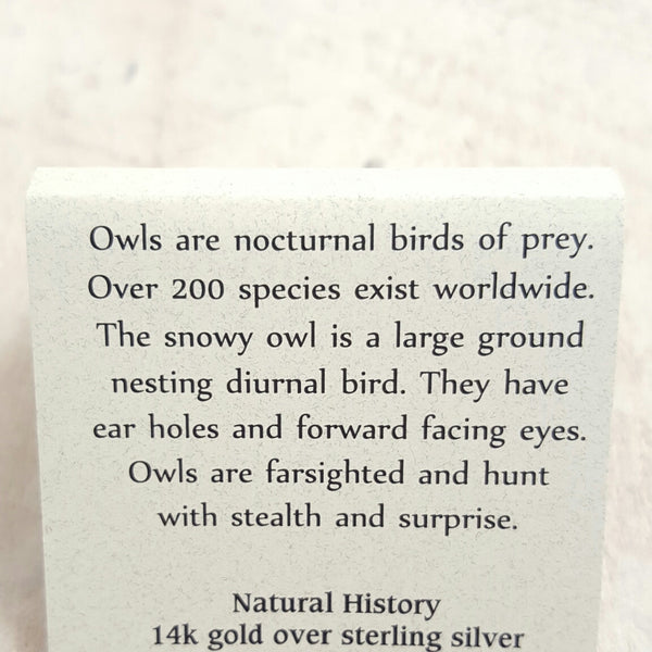 Back of Owl card