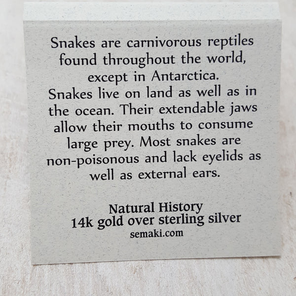 Back of Snake card