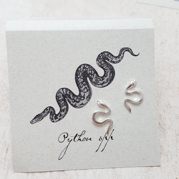Front of Silver Small Snake Earring Card
