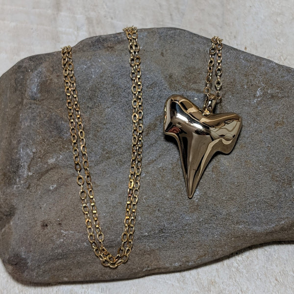 front of shark tooth necklace with chain