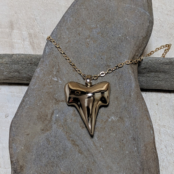 front of shark tooth necklace close up