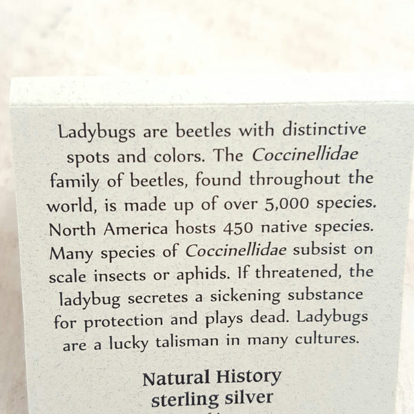 Back of Ladybug card