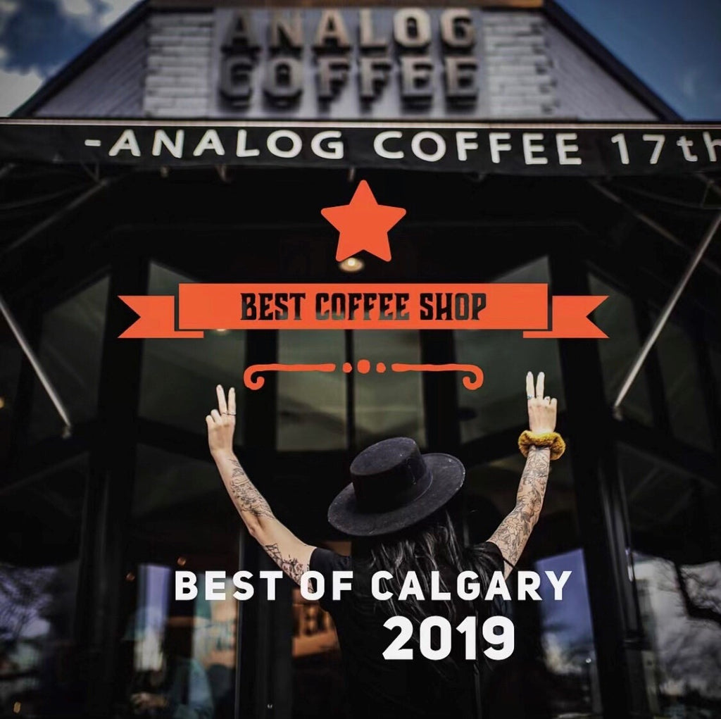 Analog Named Best Coffee Shop 2019