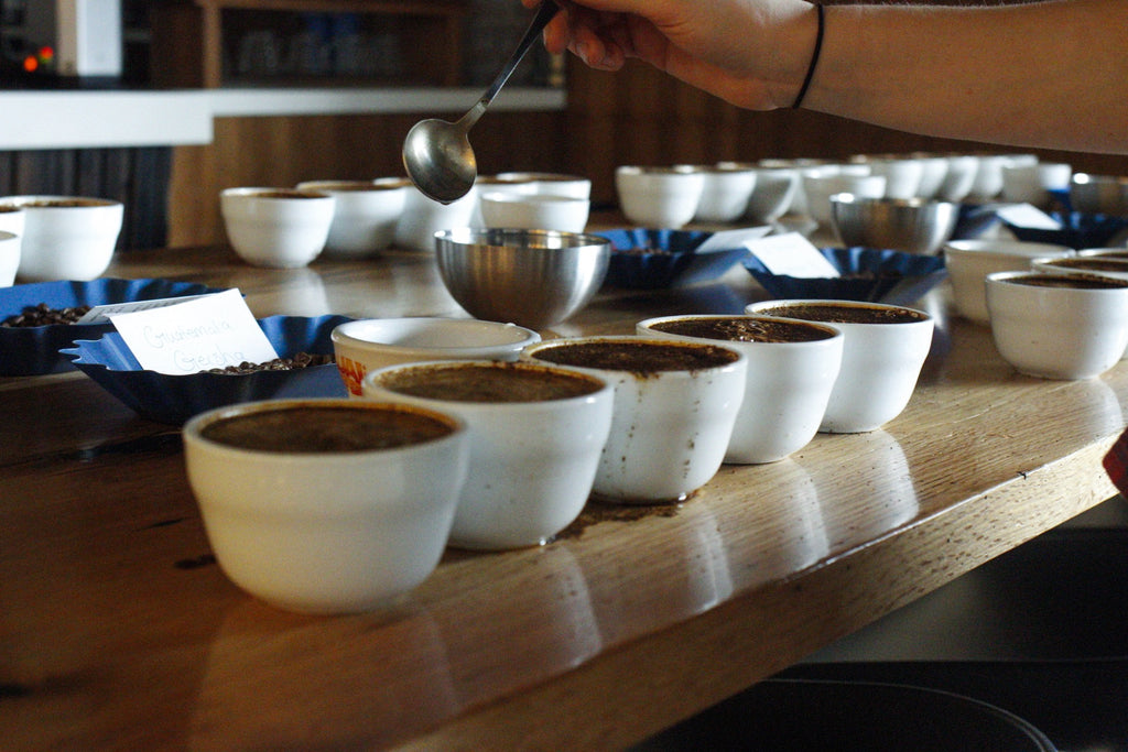 Cupping Coffee: A Step By Step Guide