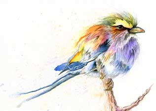 Colourful bird watercolour print