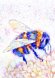 Colourful bee on flower art print