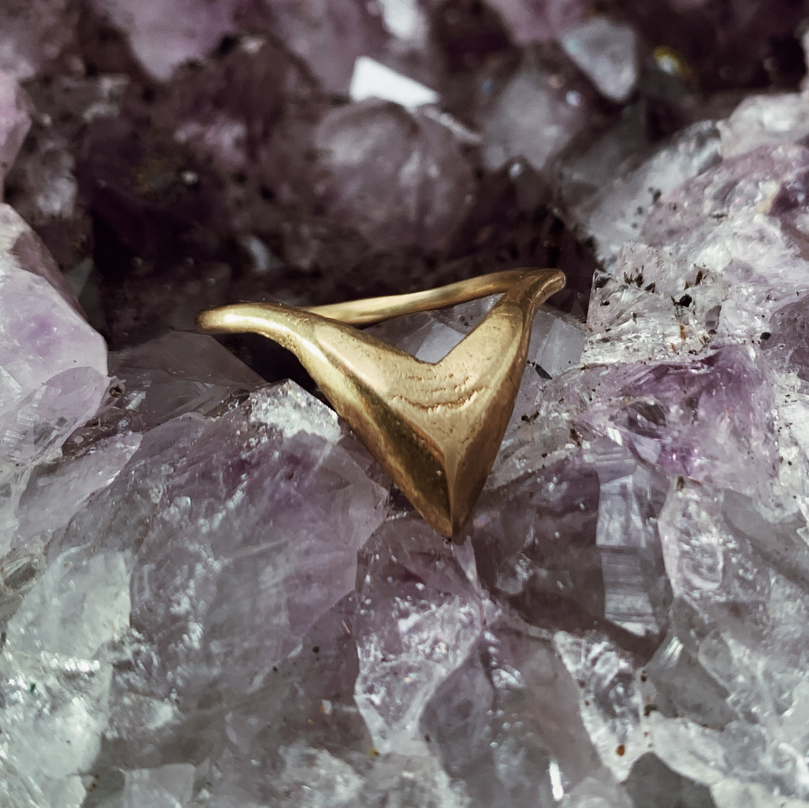 Abstract Shark Nesting Ring