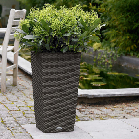 Cubico Cottage Patio Planter