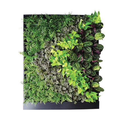 Smart Green Wall Kit