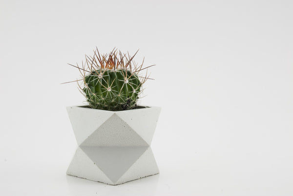 White Single Tier Geometric Planter - Conform Studios