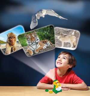 Animal Projector And Night Light