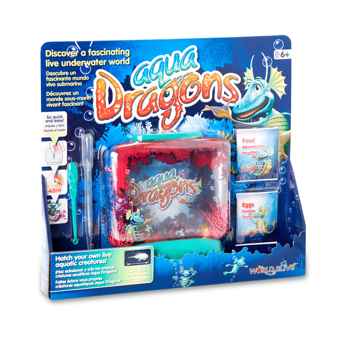 Aqua Dragons Underwater World