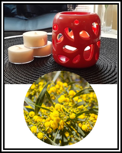 Amber Grove - Scented Soy Wax Tealight Candle - Australian Bush