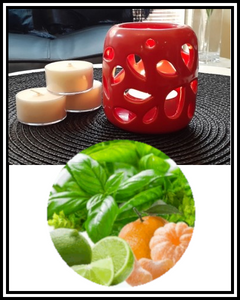 Amber Grove - Scented Soy Wax Tealight Candle - Basil Lime & Mandarin
