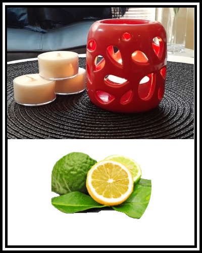 Amber Grove - Scented Soy Wax Tealight Candle - Bergamot Orange