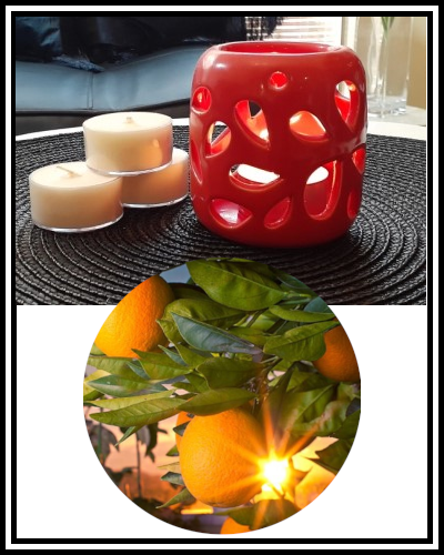 Amber Grove - Scented Soy Wax Tealight Candles - Citrus Sunrise