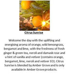 Amber Grove -  Citrus Sunrise Fragrance