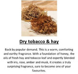 Amber Grove - Dry Tobacco & Hay Fragrance