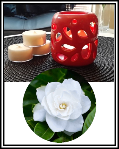Amber Grove - Scented Soy Wax Tealight Candle - Gardenia