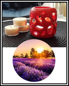 Amber Grove - Scented Soy Wax Tealight Candle - Lavender Fields