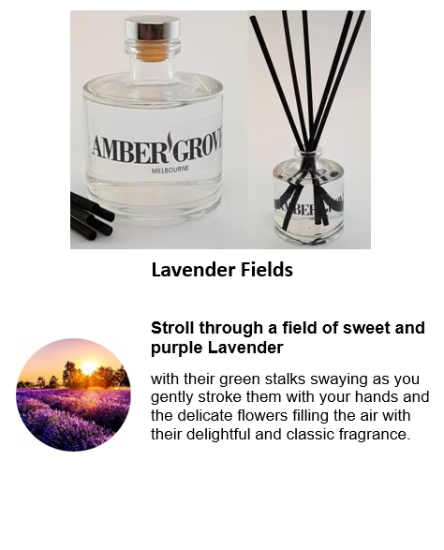 Reed Diffuser - Lavender Fields Fragrance - Amber Grove