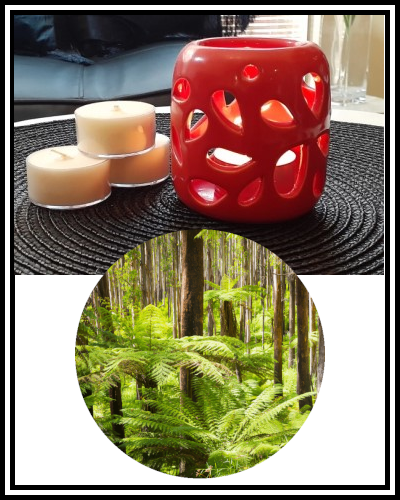 Amber Grove - Scented Soy Wax Tealight Candle - Mt Dandenong Ranges