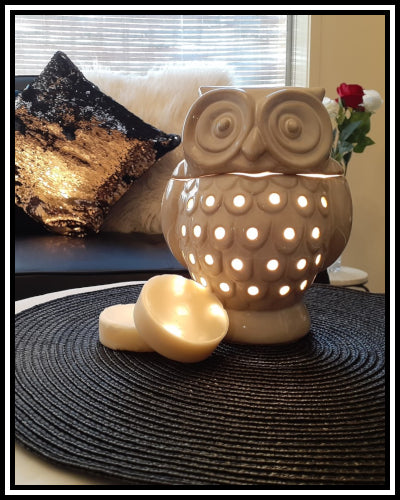 Amber Grove - Electric Scent / wax warmer  (Owl)
