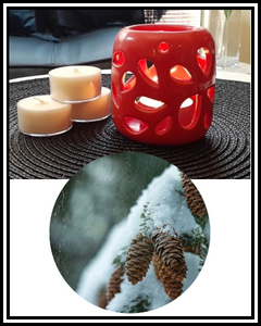 Amber Grove - Scented Soy Wax Tealight Candle - Nordic Spruce