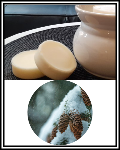 Amber Grove - Scented Soy Wax Melts - Nordic Spruce Fragrance