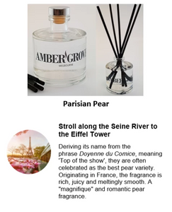 Reed Diffuser - Parisian Pear Fragrance - Amber Grove