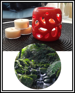 Amber Grove - Scented Soy Wax Tealight Candle - Sherbrooke (Forest)