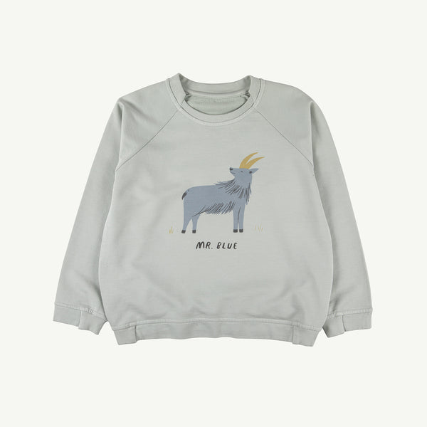 'mr. blue' sky gray sweatshirt