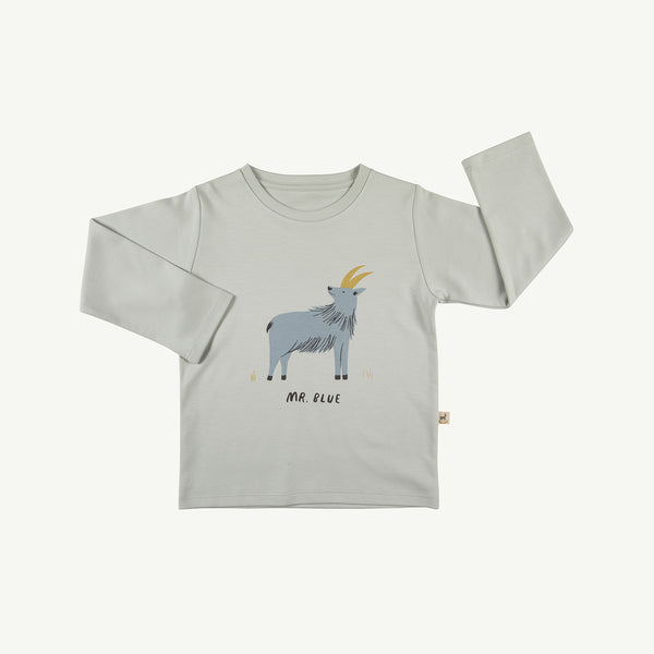 'mr. blue' sky gray t-shirt